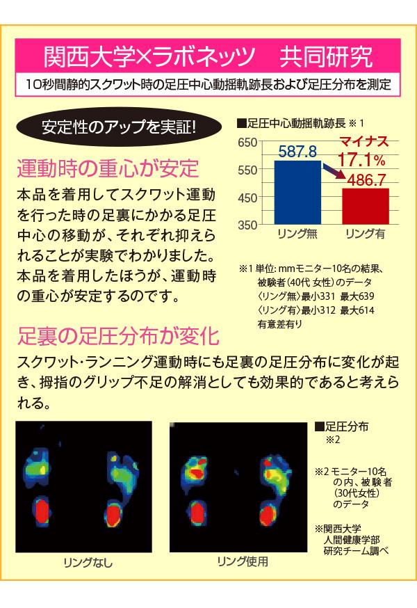 関西大学とラボネッツの共同研究